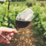 Pourquoi choisir du Bordeaux ?